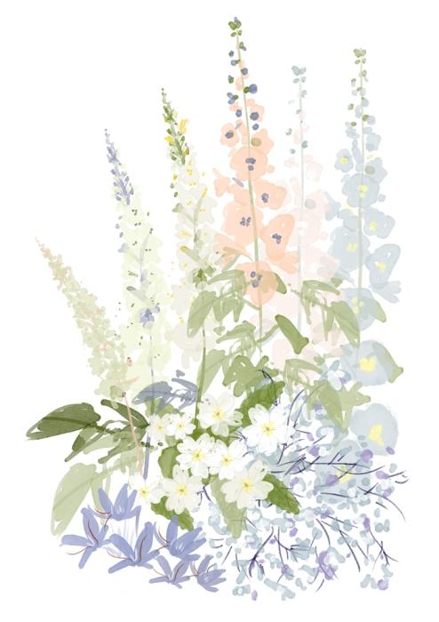 flowers-sktech
